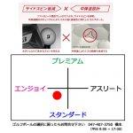 b1_shinsen-19