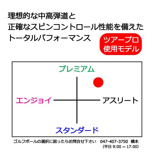 b1_type1-42