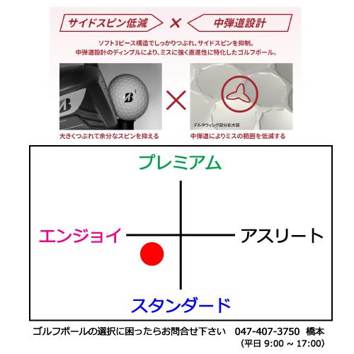 b1_type3-19