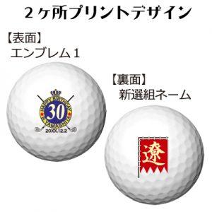b2_emblem1_shinsen-60