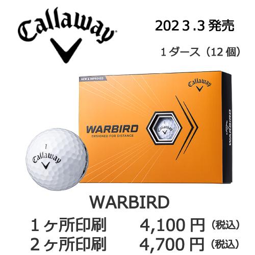 b2_emblem3_wing-86