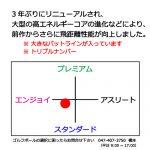 b2_name_design-17