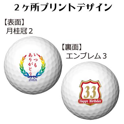 b2_type2_emblem3-25