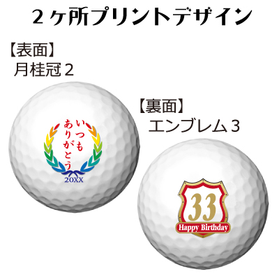 b2_type2_emblem3-73