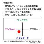 b2_type2_shinsen-20