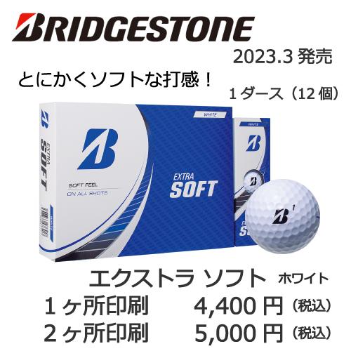 b2_type2_shinsen-22