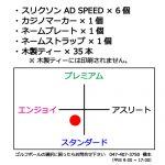 b2_type3_design-79