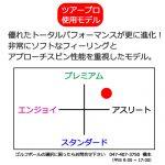 b2_type3_shinsen-10
