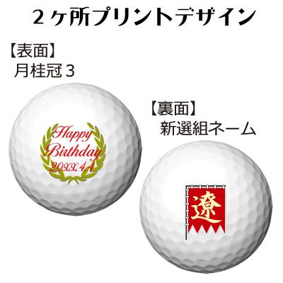 b2_type3_shinsen-34
