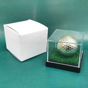 f1_goldball-