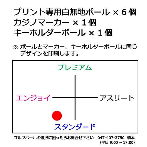 ゴルフボールギフトセットK OEMボールの商品説明