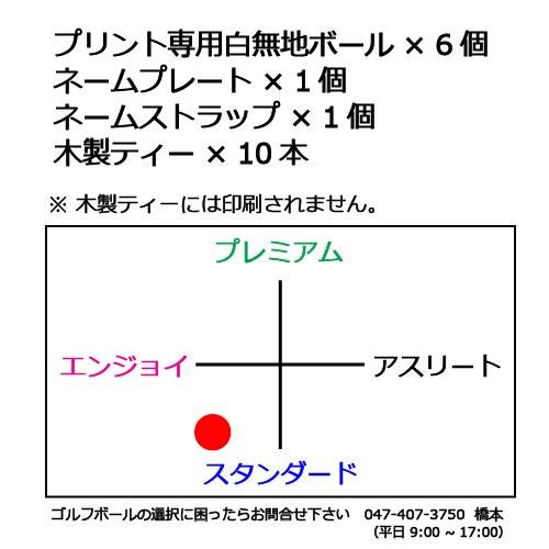ボールギフトセットN 白無地ゴルフボールの商品説明