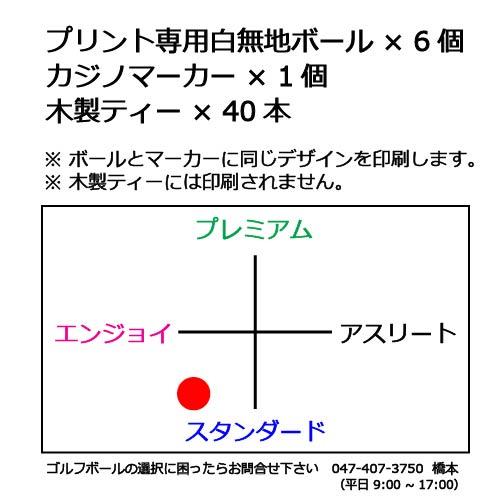 ボールギフトセットT 白無地ゴルフボールの商品説明